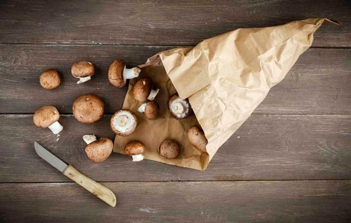хранение грибов в бумажном пакете