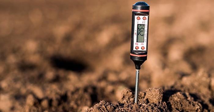 Измеритель кислотности земли фото