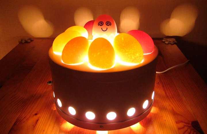 Яйца в овоскопе