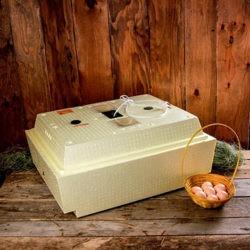 фото Какой инкубатор лучше: золушка или несушка?