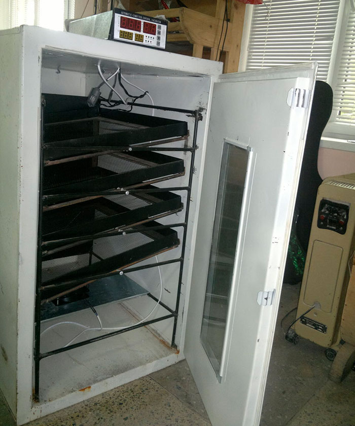 Инкубатор из старого холодильника фото
