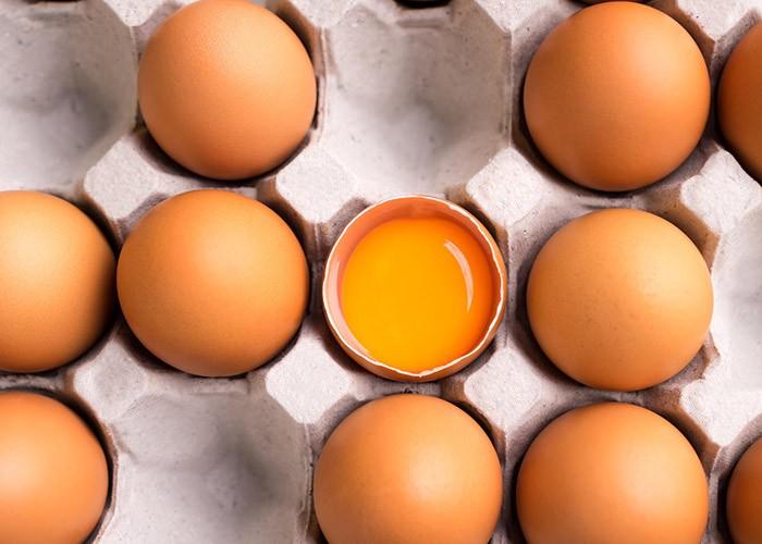 Куриное яйцо фото