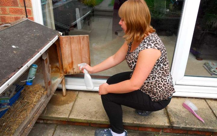утилизация и санитарная обработка кроликов
