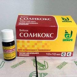 фотоСоликокс для лечения кокцидиоза у цыплят и взрослых бройлеров