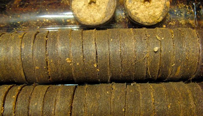 Кокосовые таблетки фото