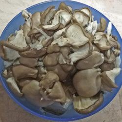 фото Как и сколько варятся грибы вешенки?