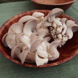 фото Сколько по времени готовить грибы вешенки?