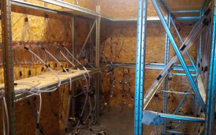 Подготовка помещения для выращивания вешенок