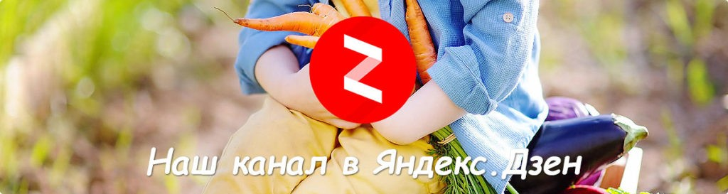 Мы в Яндекс Дзен